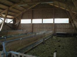 Ovce - chovatelské pomůcky V. Současné technologie